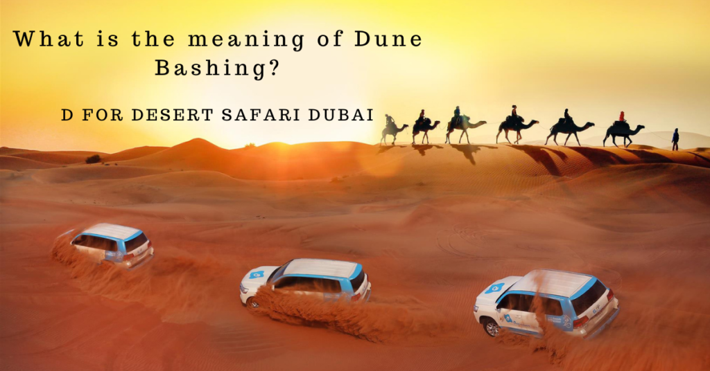 What is the meaning of Dune Bashing